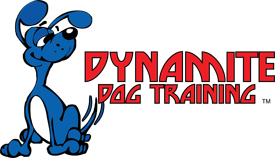 Dynamite Dog Training
